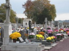 Graves with chrysanthemums